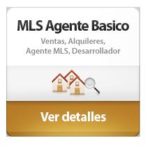 Basic agent mls es