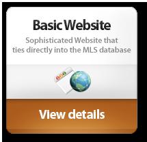 basicwebsite
